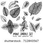 set of leave mint doodle... | Shutterstock .eps vector #712843567