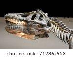 skull head area and dinosaur...   Shutterstock . vector #712865953
