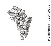 grapes. hand drawn engraving... | Shutterstock .eps vector #712919173