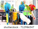 parrots | Shutterstock . vector #712986547
