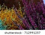lupinus  lupin  lupine field... | Shutterstock . vector #712991257