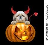 halloween pumpkin witch cute... | Shutterstock . vector #713006107