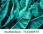tropical banana leaf texture ... | Shutterstock . vector #713100973