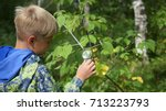 schoolboy in the park studies...   Shutterstock . vector #713223793