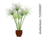 vector cartoon plant isolated... | Shutterstock .eps vector #713330407