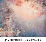 apple tree blooming vintage... | Shutterstock . vector #713596753