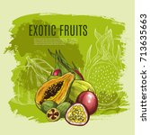 exotic papaya fruit sketch... | Shutterstock .eps vector #713635663