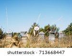 beekeeper working collect honey.... | Shutterstock . vector #713668447