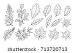 hand drawn autumn leaves... | Shutterstock .eps vector #713720713