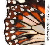 monarch butterfly wing for... | Shutterstock . vector #713733133