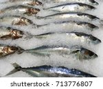 Small photo of pollack, pollock, alaska pollock