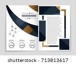 abstract vector layout... | Shutterstock .eps vector #713813617