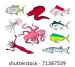 marine life 6 | Shutterstock .eps vector #71387539