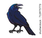 cartoon black crow isolated on ... | Shutterstock .eps vector #713975773