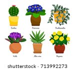 houseplants and flowerpots.... | Shutterstock .eps vector #713992273