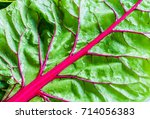 close up of a organic and... | Shutterstock . vector #714056383