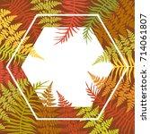 hexagon fern frond frame vector ... | Shutterstock .eps vector #714061807