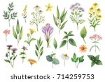 hand drawn watercolor set green ... | Shutterstock . vector #714259753