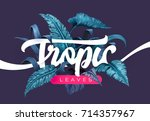 bright tropical background with ... | Shutterstock .eps vector #714357967