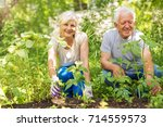 Happy Healthy Seniors Gardening