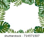 tropical background with leaves ... | Shutterstock .eps vector #714571507