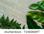 creative nature layout made of... | Shutterstock . vector #714600697