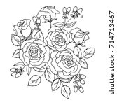 vector black white contour... | Shutterstock .eps vector #714713467