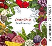 full color exotic fruits ... | Shutterstock .eps vector #714750757