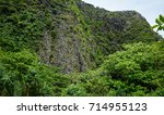 tropical forest on mountain at... | Shutterstock . vector #714955123