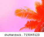 palm tree on sky background.... | Shutterstock . vector #715045123