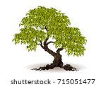 tree with a realistic | Shutterstock .eps vector #715051477