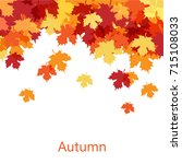 autumn maple leaf fall... | Shutterstock .eps vector #715108033