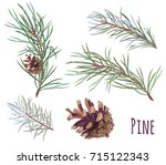 collection of pine branches and ... | Shutterstock .eps vector #715122343