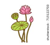 hand drawn lotus plant... | Shutterstock .eps vector #715122703