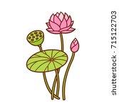 hand drawn lotus plant... | Shutterstock .eps vector #715122703