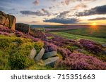 Small photo of Vibrant purple heather being illuminated by the setting sun in the Peak District.