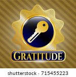 gold emblem with key icon and... | Shutterstock .eps vector #715455223