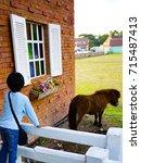 kid watching little donkey in... | Shutterstock . vector #715487413