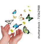 Hands Releasing Exotic...