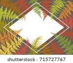 fern frond rhombus frame vector ... | Shutterstock .eps vector #715727767