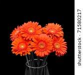 orange gerbera flower in vase | Shutterstock . vector #71580217
