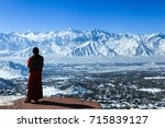 male lama admires top view of... | Shutterstock . vector #715839127