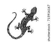 lizard   ornamental figure | Shutterstock .eps vector #715916167