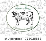 vector image of an cow and