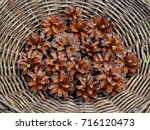Many Pine Cones In A Bucket
