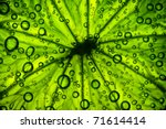 Abstract Green Background. A...