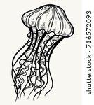 jellyfish isolated symbol....   Shutterstock .eps vector #716572093