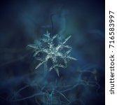 Real Snowflake At High...
