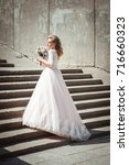 a beautiful young bride in a... | Shutterstock . vector #716660323