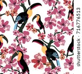 tropical seamless pattern with... | Shutterstock .eps vector #716776513
